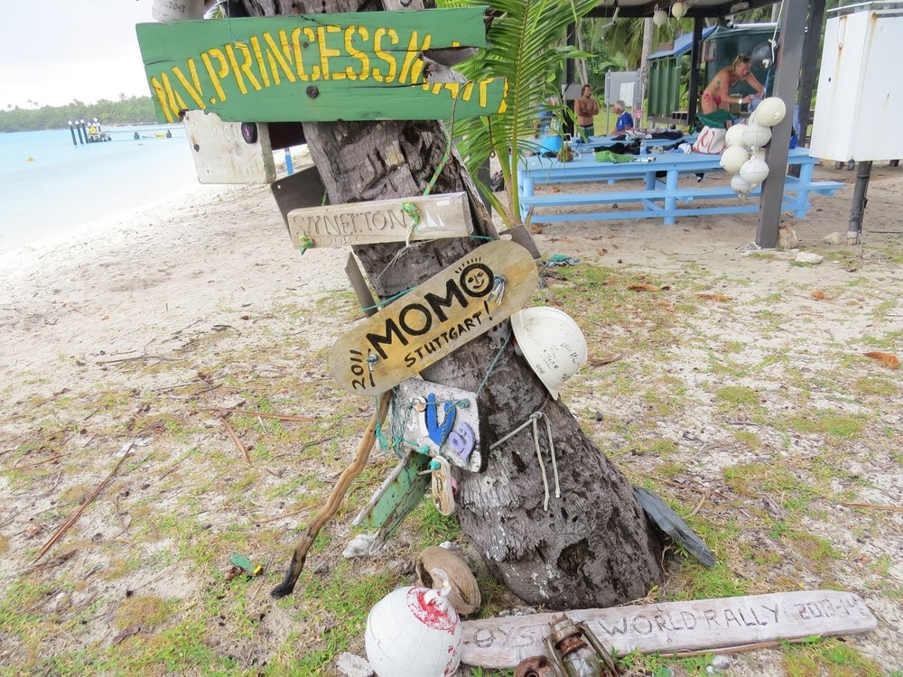 Signs from visiting boats adorned the trees.