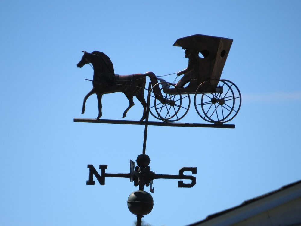 Horse & buggy - Medfield, MA