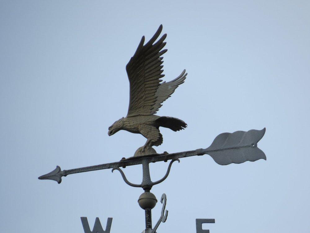 Eagle - Walpole, MA