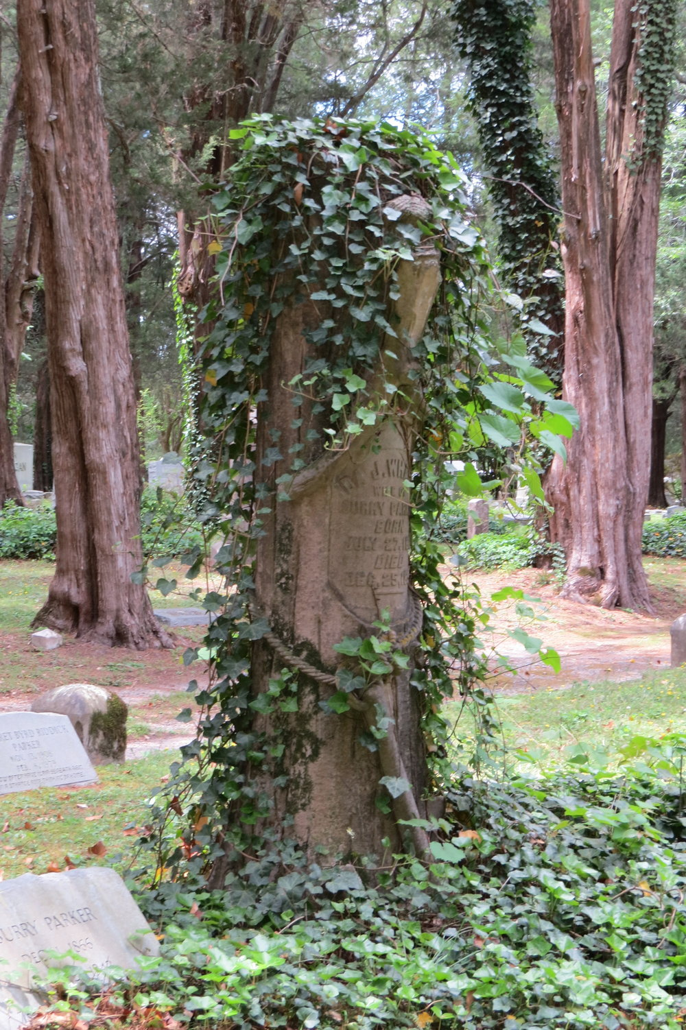 Tree trunk monument with real ivy
