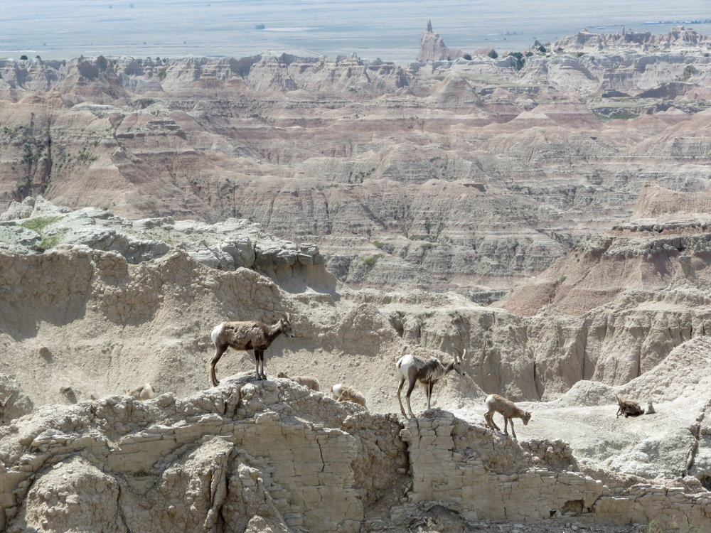 badlands national park  - South dakota - 2012