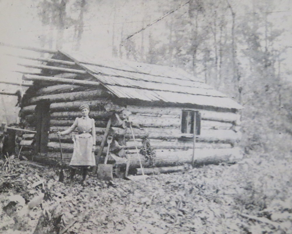 A true family legend ... Becky's mom Lulubelle Sowers Lount traveled to Michigan by covered wagon, built a cabin and homesteaded her land.