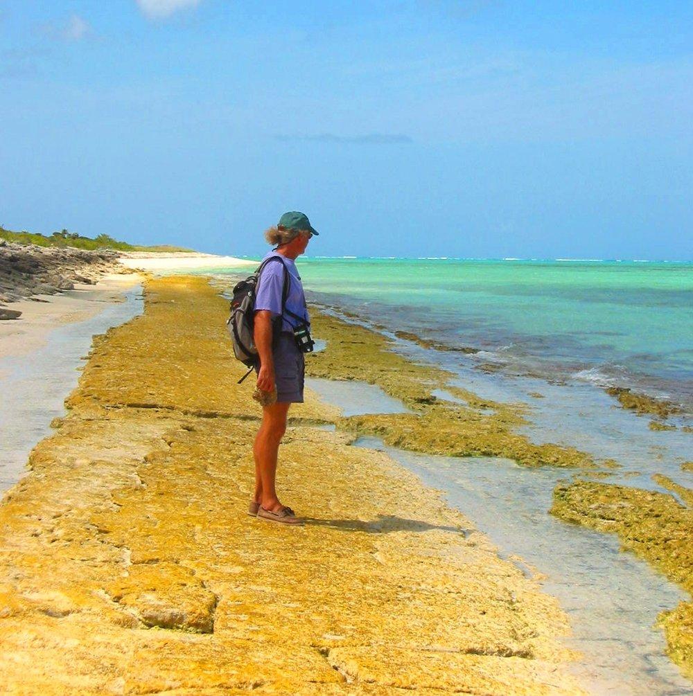 Beachcombing - Mayaguana