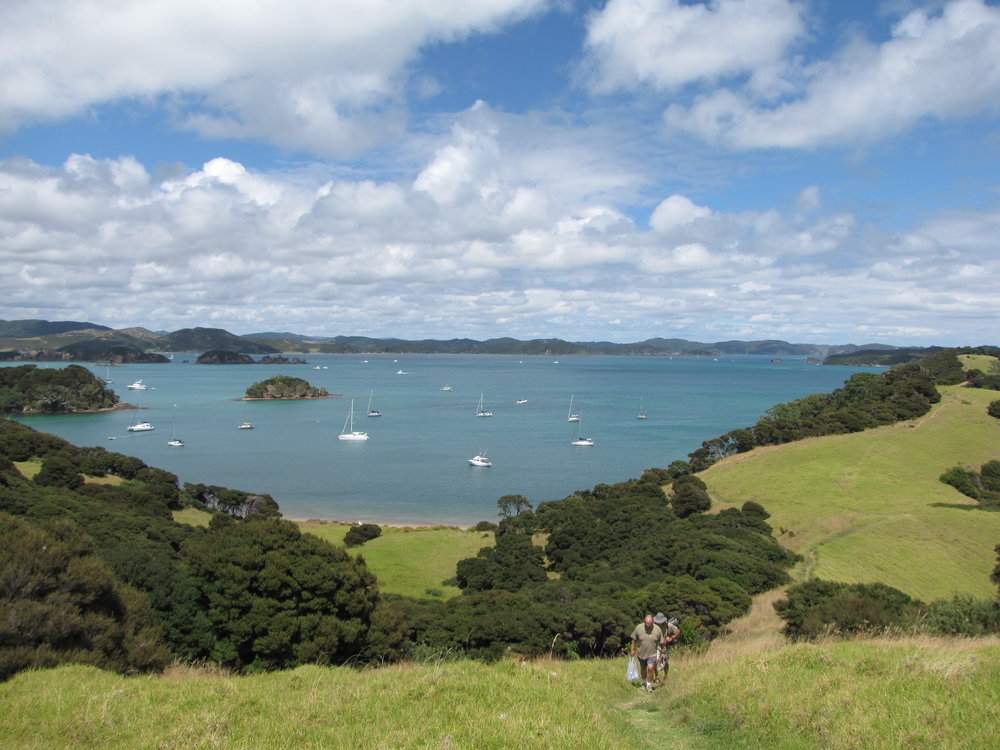 Hiking on Urupukapuka was a wonderful break from boat work.