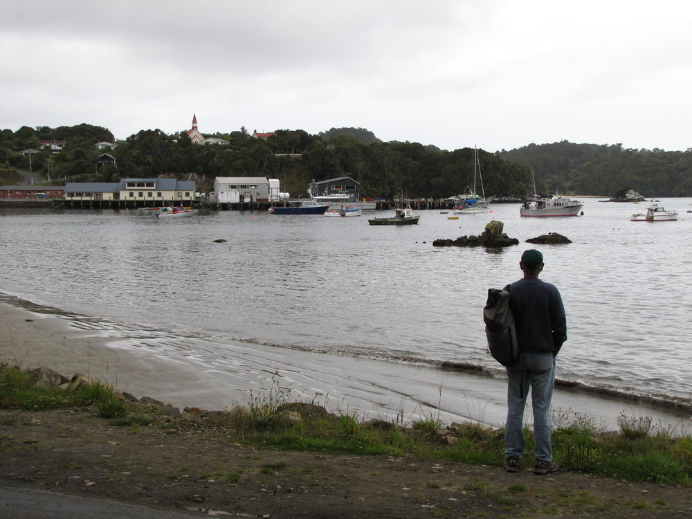 The harbour in Oban, Stewart Island