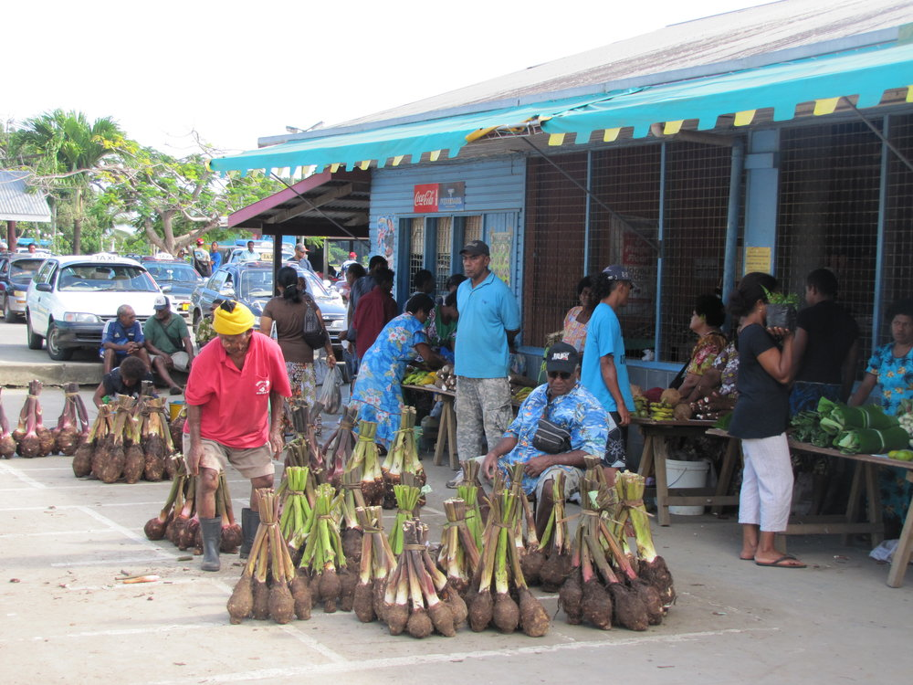 Kava root for sale at the market