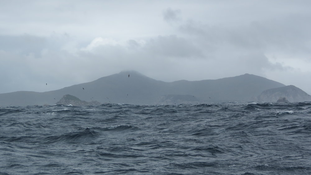 The entrance to Port Davey behind Breaksea Islands looked ominous and required lots of trust.