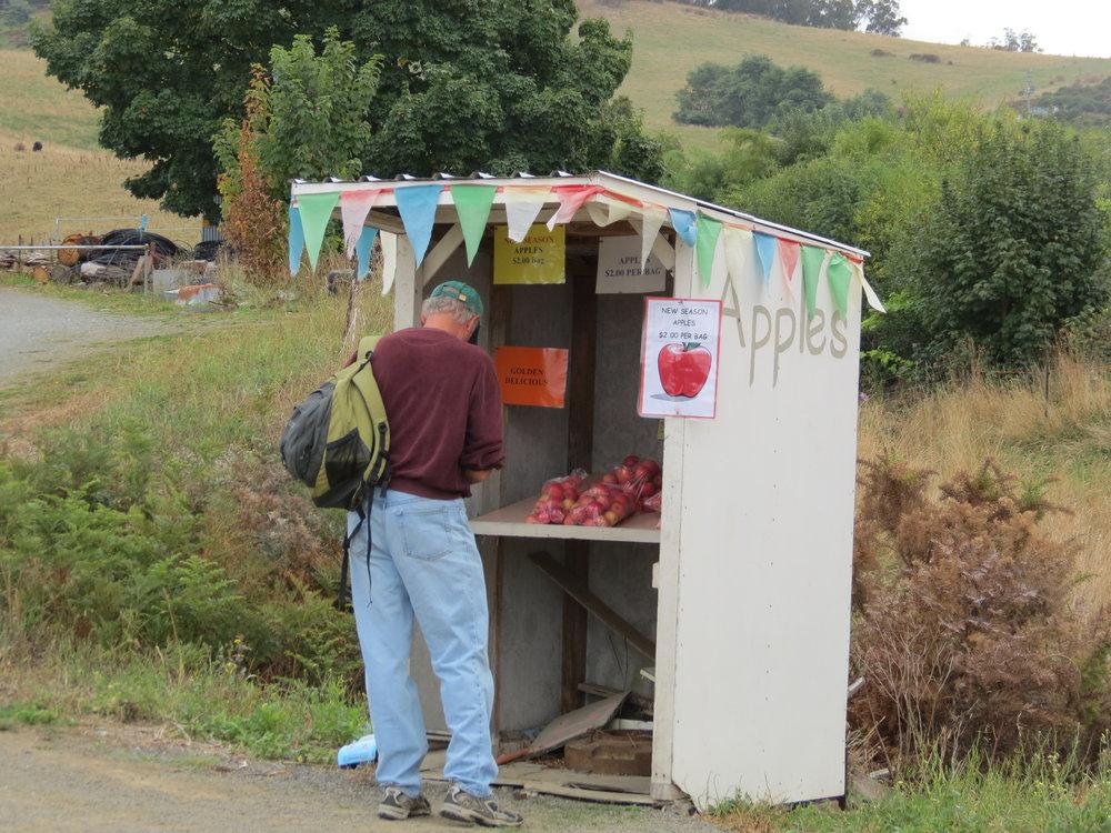 "An ""honesty"" apple stand in Cygnet, Tasmania"