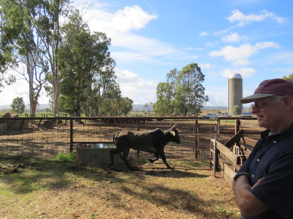 Oakford Farm -Waroona