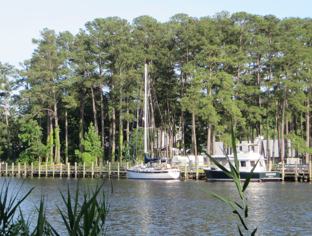 Cups' tied up at the linear dock at Atlantic Yacht Basin in Chesapeake, VA