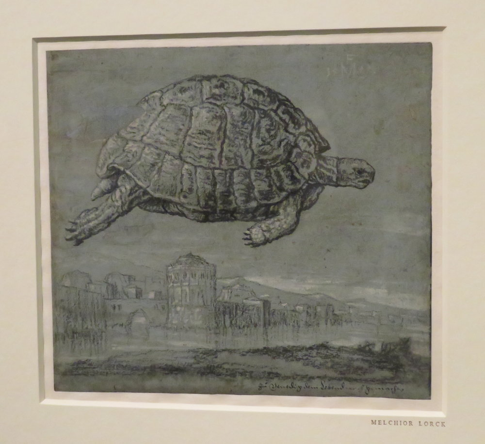 Tortoise & View of Walled Town - Melchior Lorck - 1555