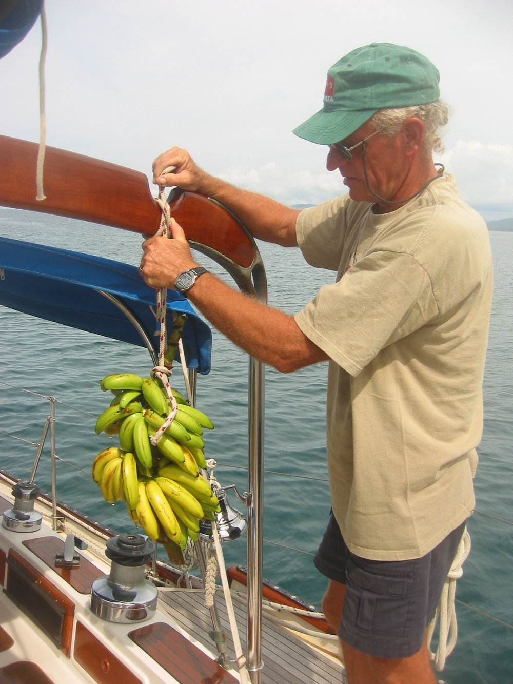 One of many hands of bananas we received as gifts from the islanders. This was a small one!