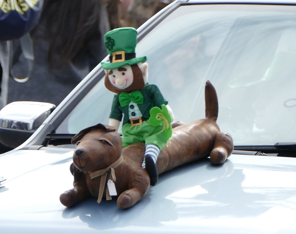 Dachshunds, greyhounds, leprechauns and Irish wolfhounds marched proudly together.