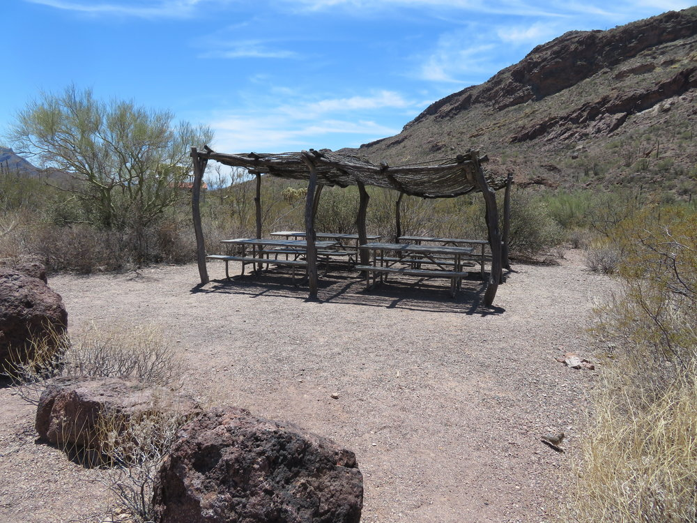 We stopped en route and lunched under a traditional ocotillo ramada which provided some respite from the brutal sun.