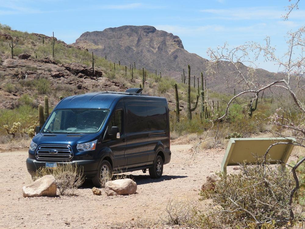 Blue in Alamo Canyon