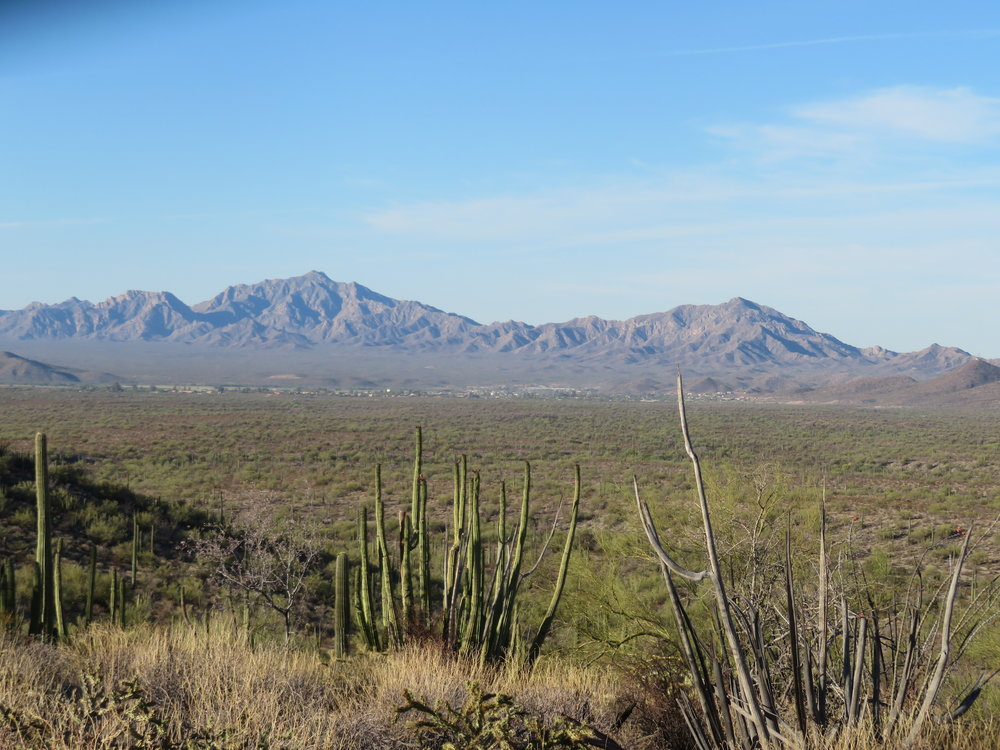 The trail affords great vistas … we can see Mexico from here … only 7 miles away and even the border fences are visible.