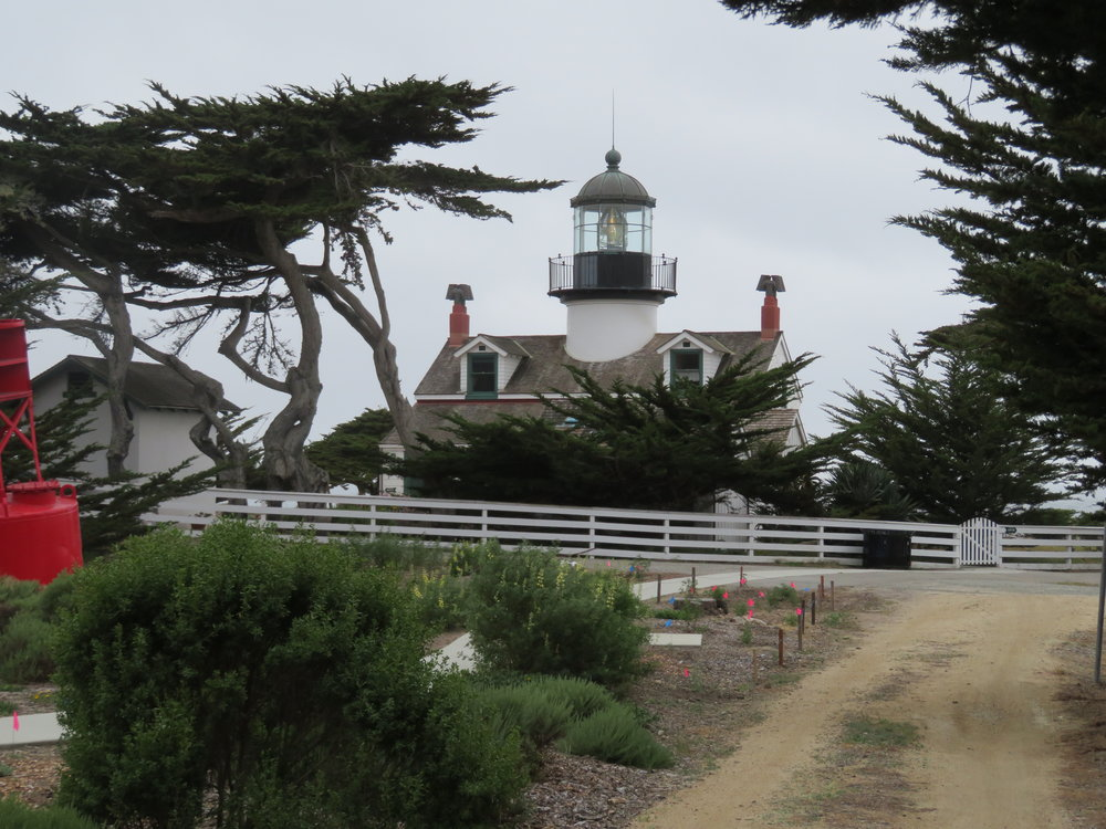 Point Pinos Light was first lit in 1855.