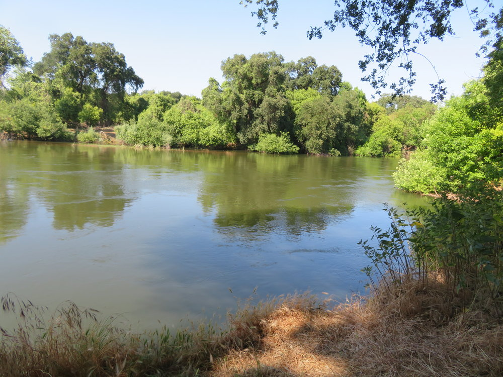 Stanislaus River view