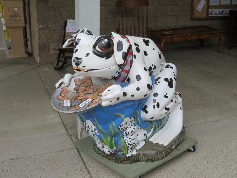 Dalmatian Frog?