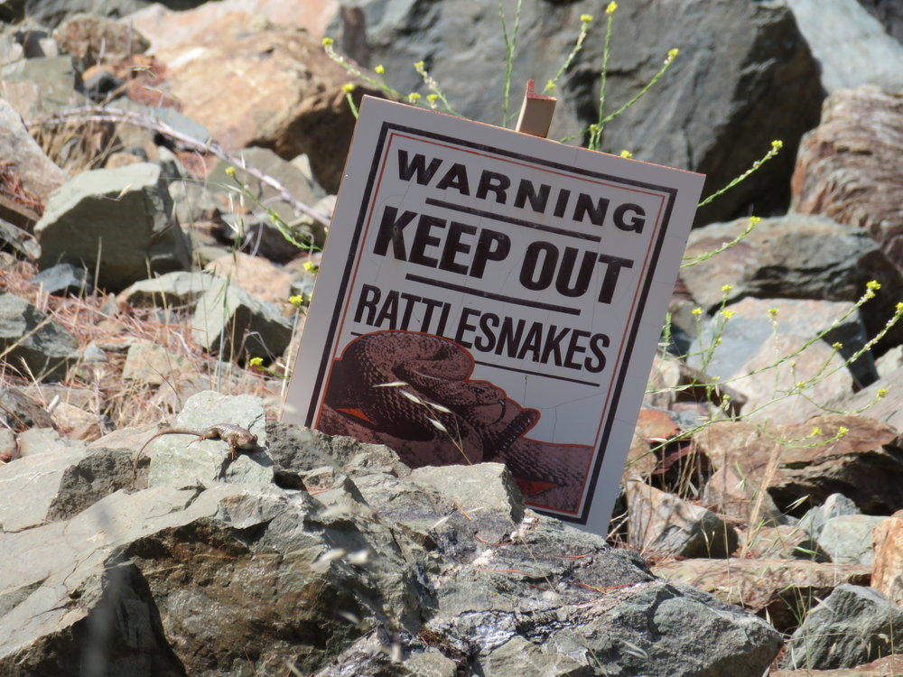 No need to tell us twice!  Shasta Lake Dam, California