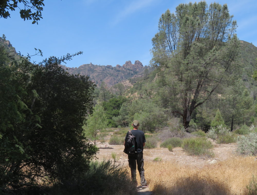 Pinnacles National Park  - California - May 2018