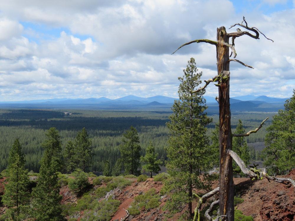 Lava Butte Rim Trail view