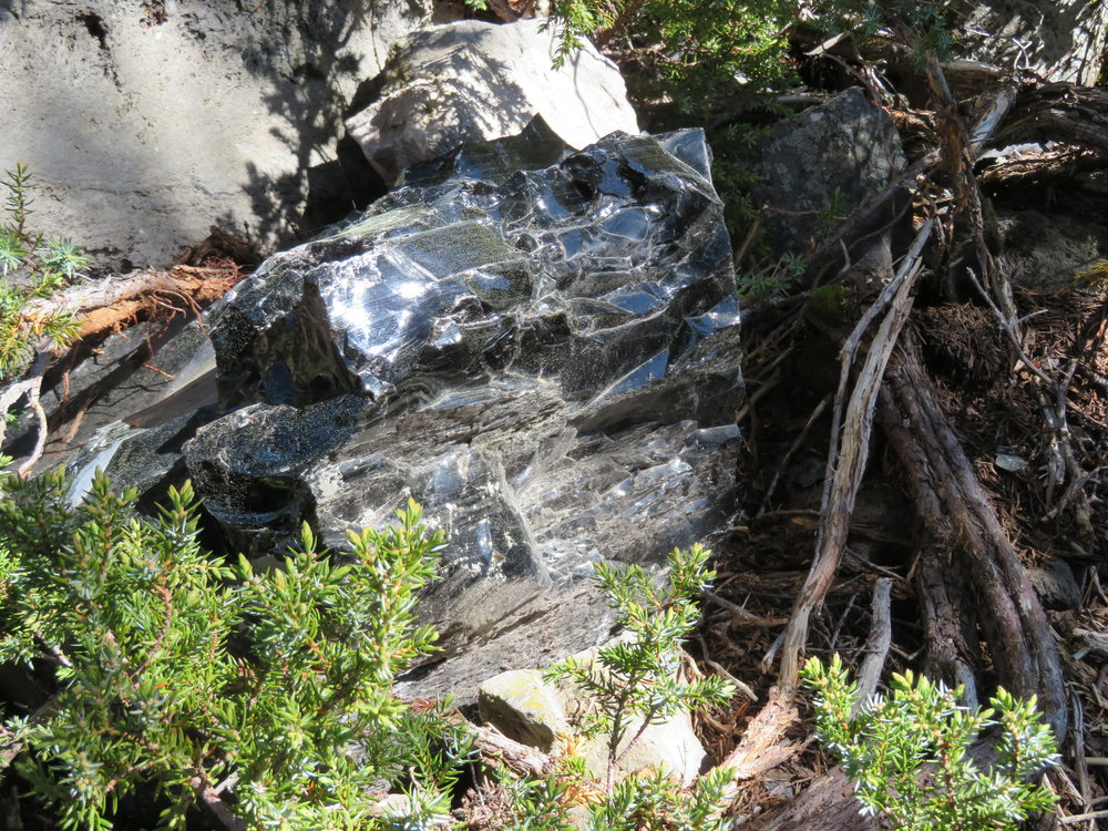 Shiny obsidian rocks on the trail