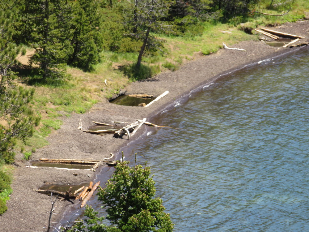 Logs & stones around the hot springs