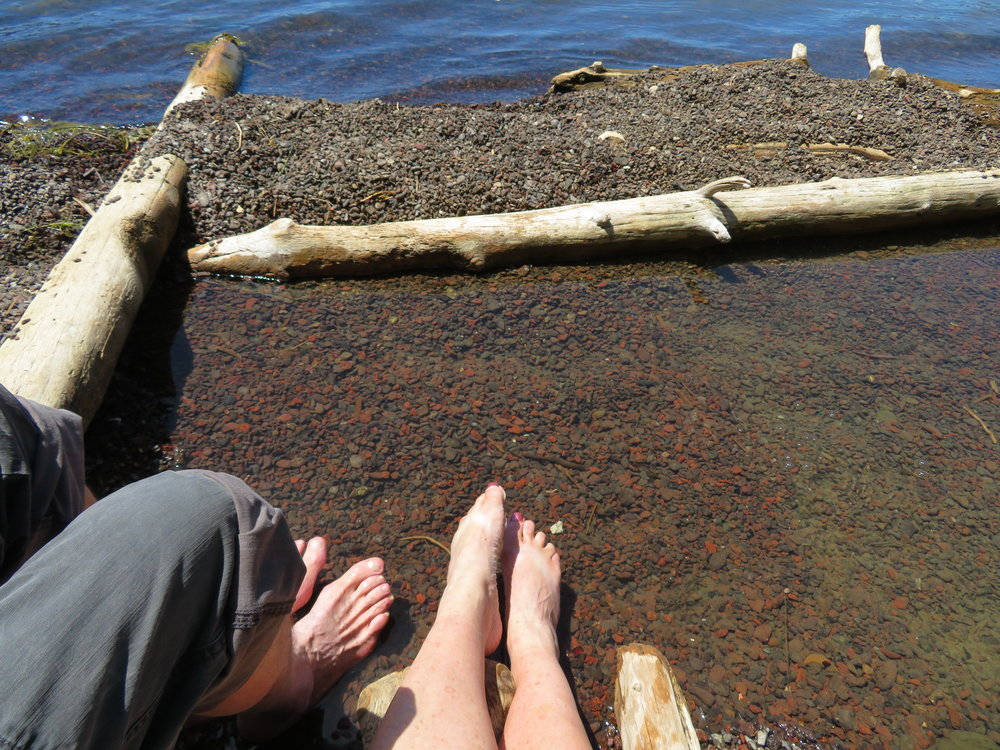 Dipping our toes