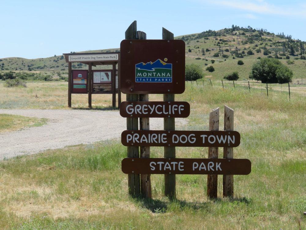 montana greycliff prairie dog town.JPG
