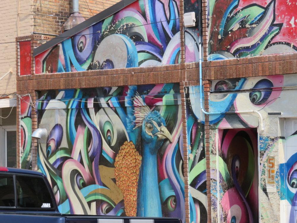 fargo-street art-peacock.JPG