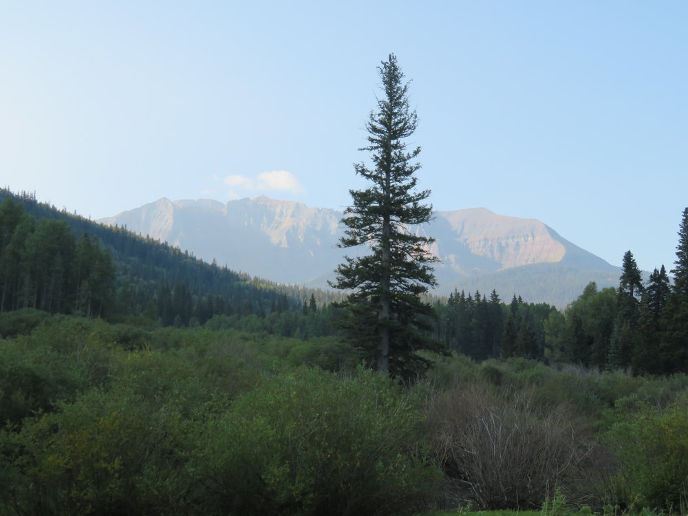 Mountain view from trail