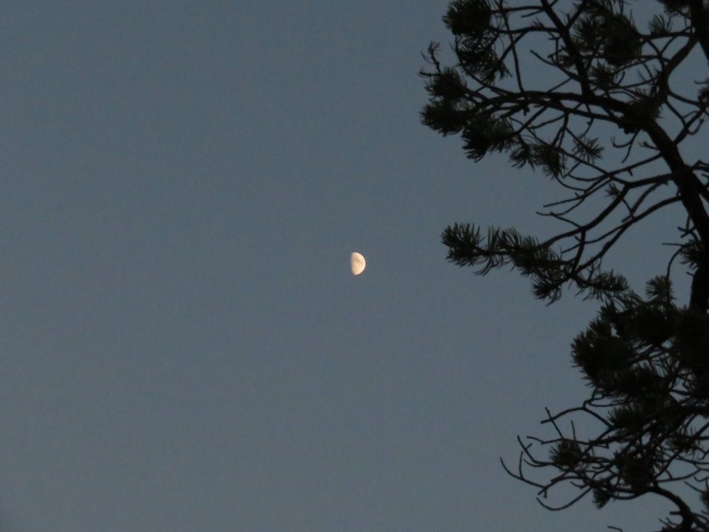And then the moon rose