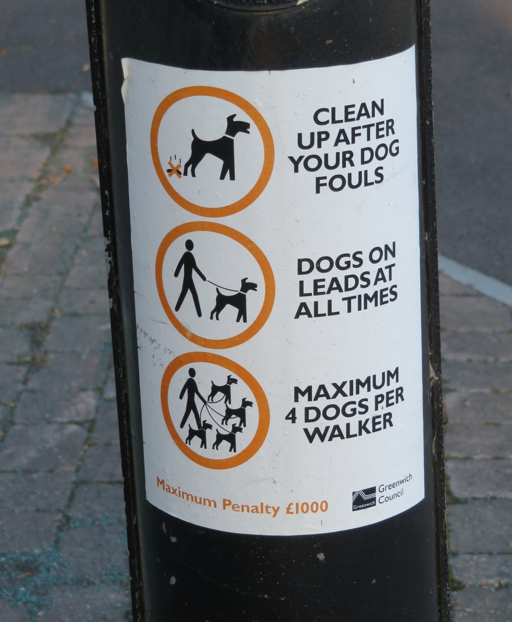 signs_dog rules.JPG