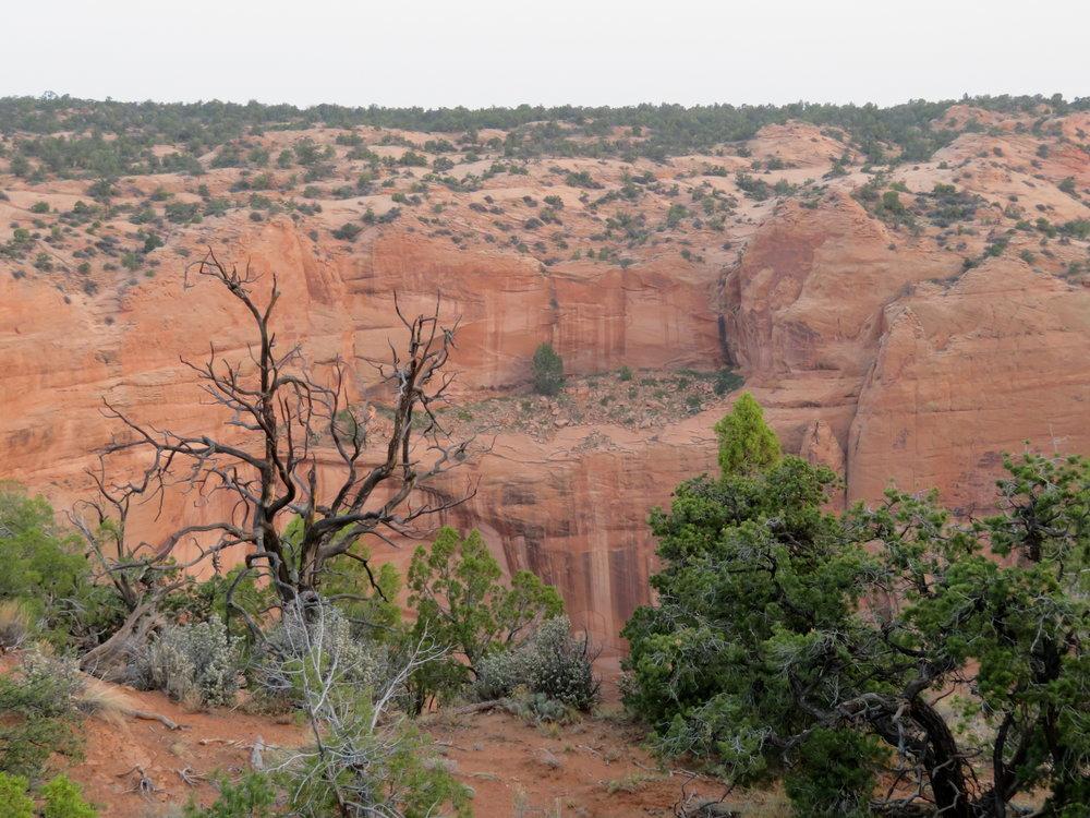 Navajo National Monument  - Arizona - August 2018