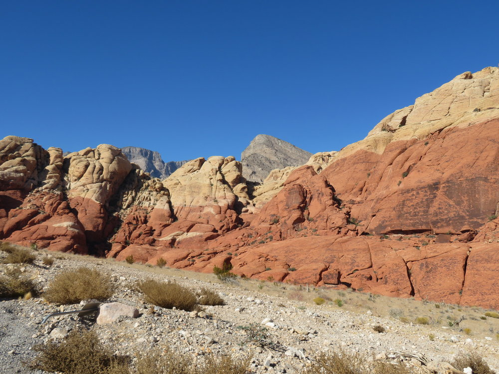 Morning in the Calico Hills