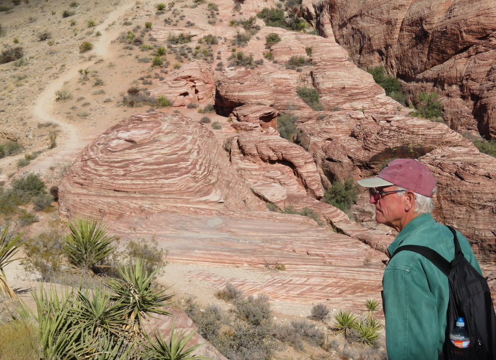 Swirls of sandstone along the Calico Hills trail