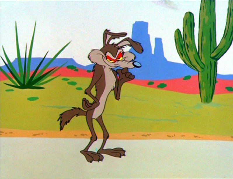 wile e coyote.jpg