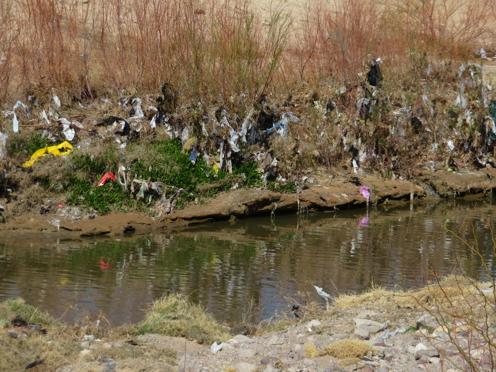 Plastic bags of every color, shape and size are the most common and worst polluters.