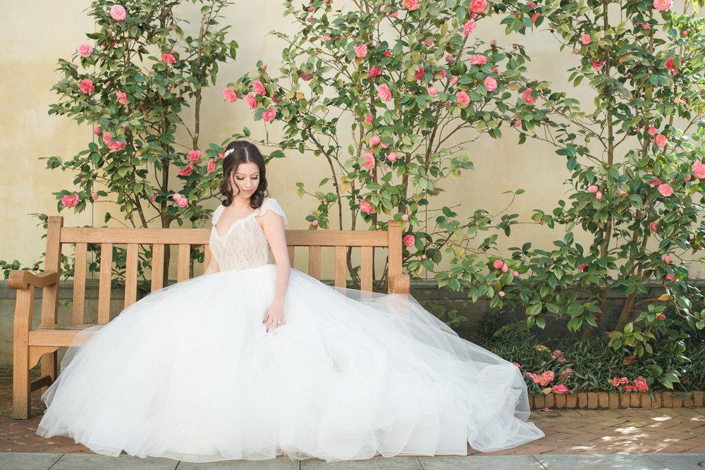 Charlotte wedding photos_Charlotte wedding collective-34.jpg