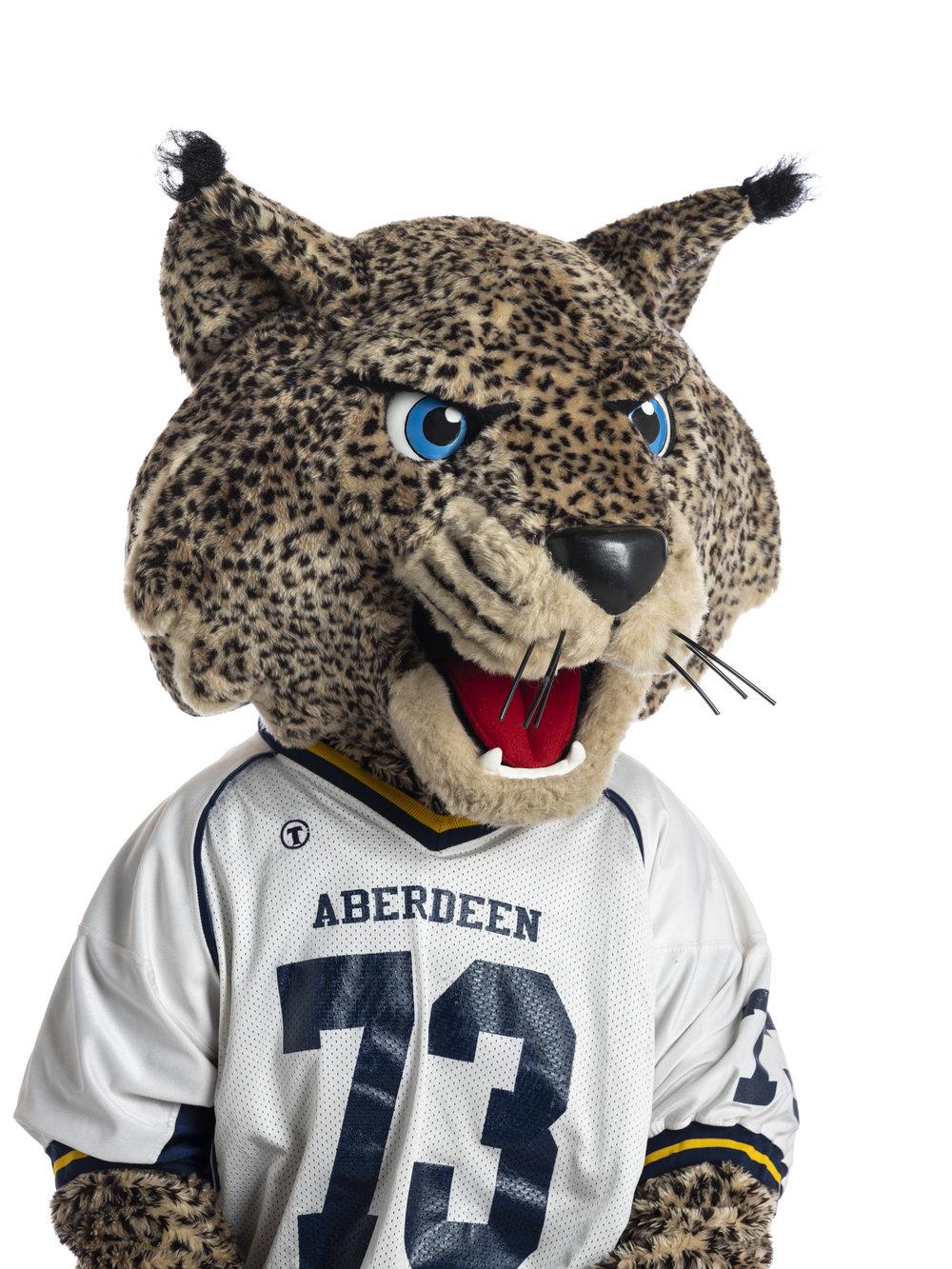 Aberdeen High Bobcats