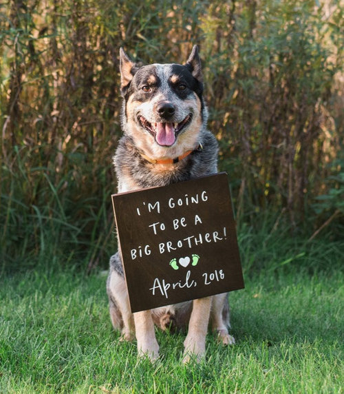 397be9c7ed6c9 Baby Announcement Sign