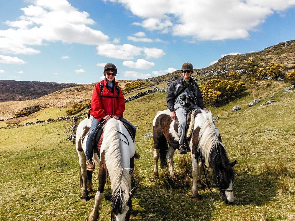 connemara-life-connemara-pony-44.jpg