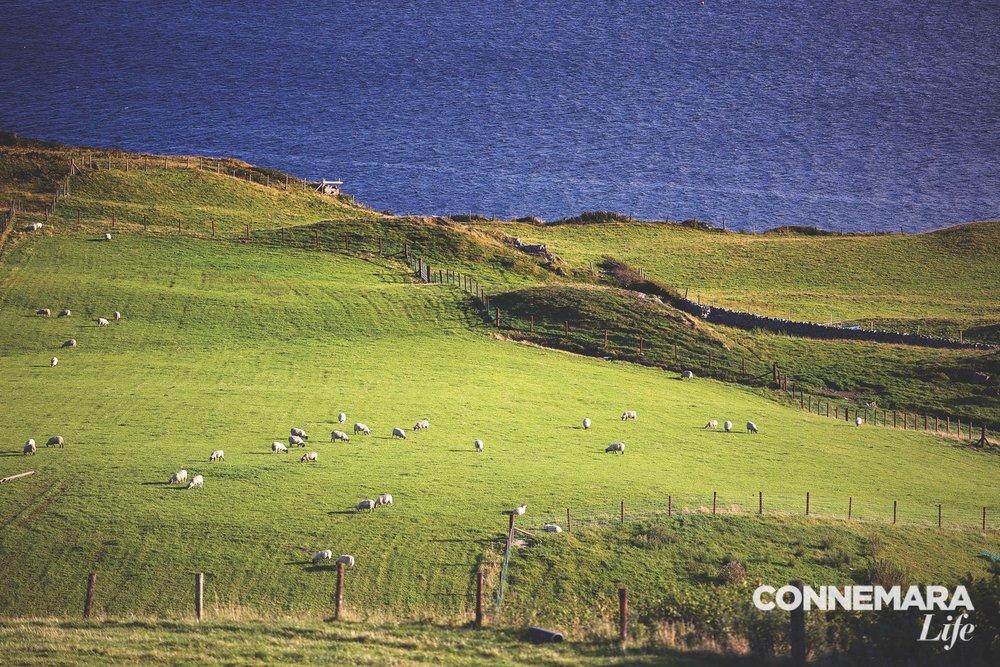 connemara-life-clifden-fashion-9.jpg