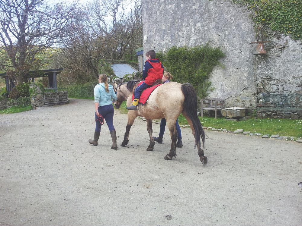 Connemara Therapeutic Riding Group, Connemara, Ireland