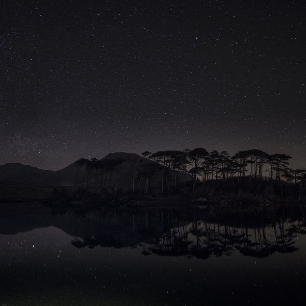 connemara-life-pine-island-mark-furniss.jpg