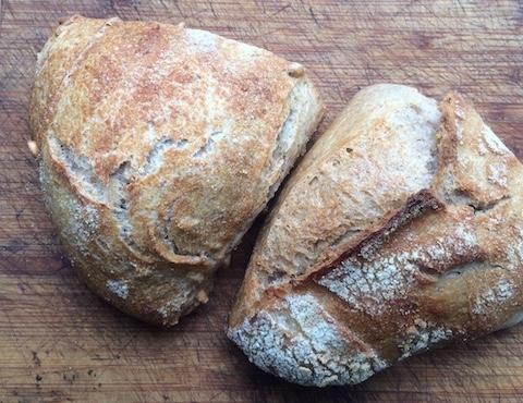 ドイツで大人気のライ、ホール小麦の固いパン