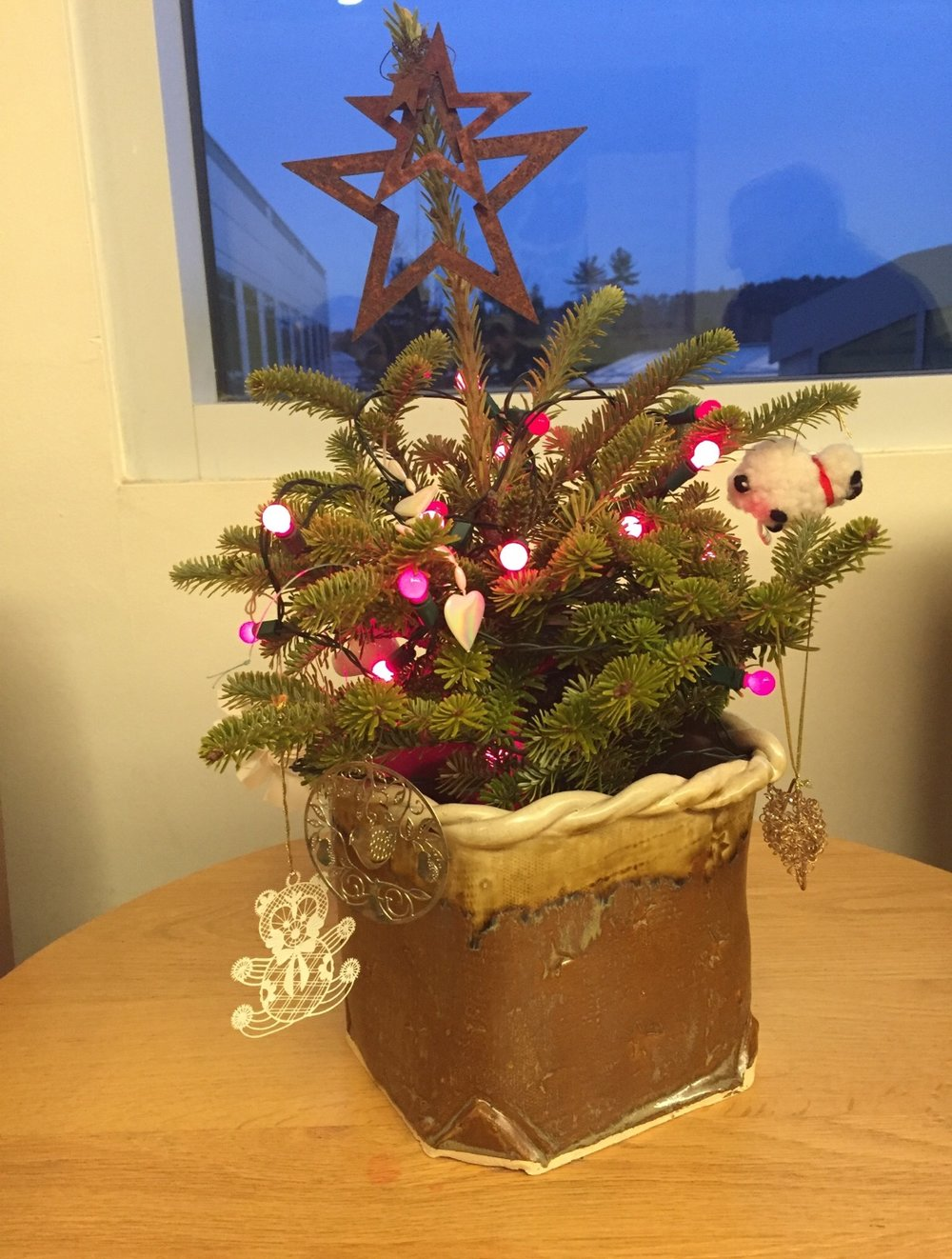 A Christmas tree plant, perfect for keeping those curious pets out of the water base!
