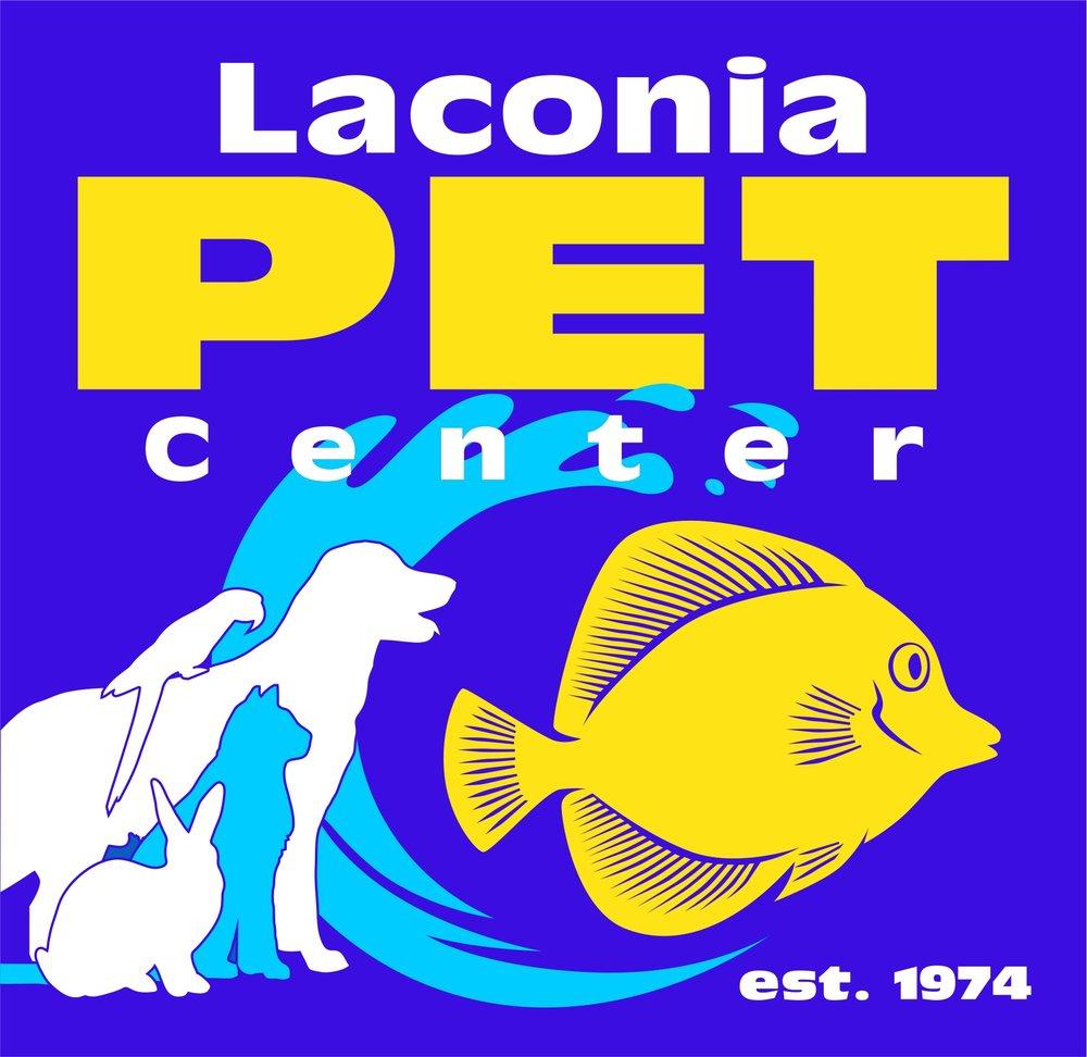 Dog Walker Cat Sitter Laconia Gilford Meredith Belmont Lake Winnipesaukee Lake Winnisquam Lake Opechee Weirs Beach Lakes Region New Hampshire