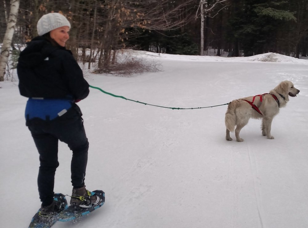 Lee and Murphy getting ready for their first skijor lesson.